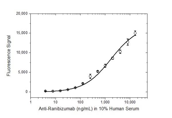 Anti Ranibizumab Antibody, clone AbD16746_hIgG1 thumbnail image 3