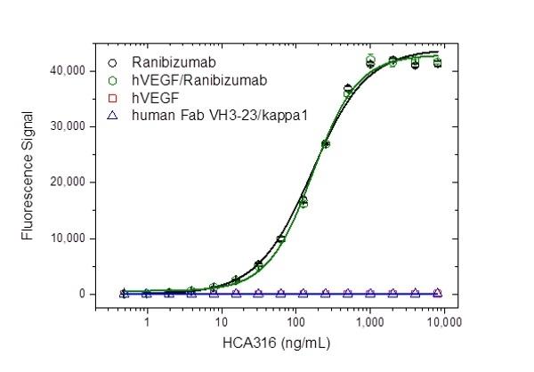 Anti Ranibizumab Antibody, clone AbD29858_hIgG1 thumbnail image 2