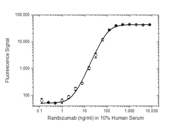 Anti Ranibizumab Antibody, clone AbD29858_hIgG1 thumbnail image 3