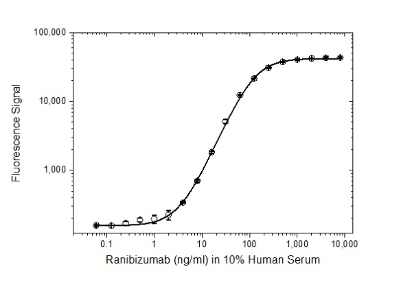 Anti Ranibizumab (Drug/Target Complex) Antibody, clone AbD29928 thumbnail image 3