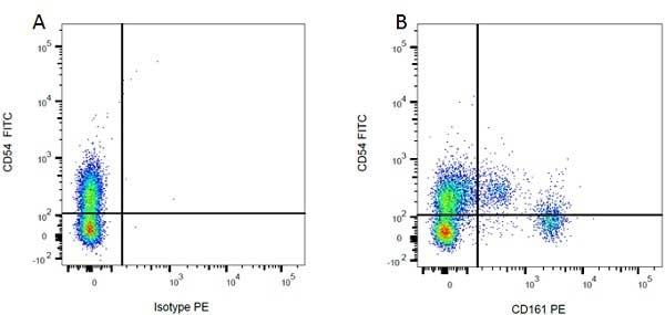 Anti Rat CD161 Antibody, clone 10/78 thumbnail image 3
