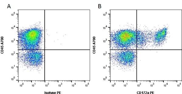 Anti Rat CD172a Antibody, clone ED9 thumbnail image 1