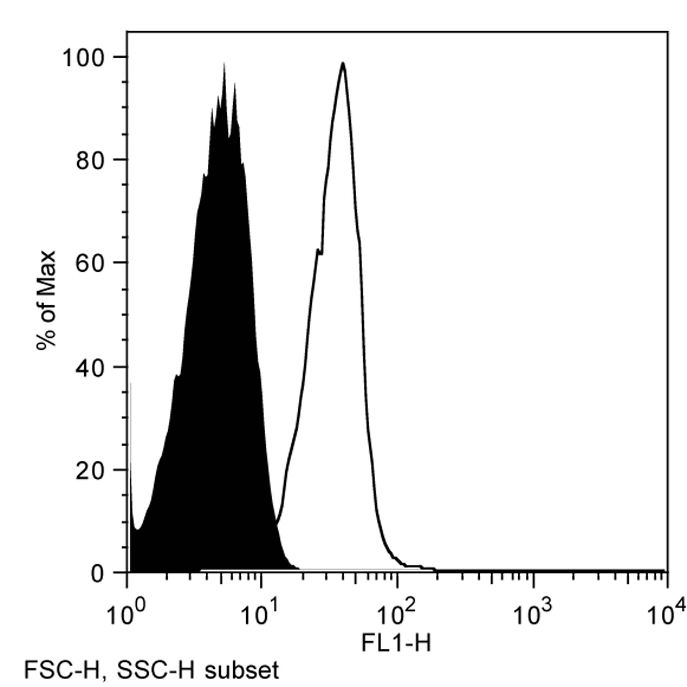 Anti Rat CD1d Antibody, clone WTH1 thumbnail image 1