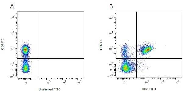 Anti Rat CD2 Antibody, clone OX-34 thumbnail image 3