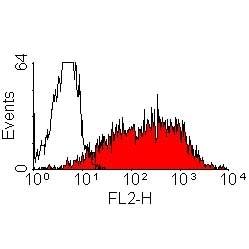 Anti Rat CD25 Antibody, clone OX-39 thumbnail image 1