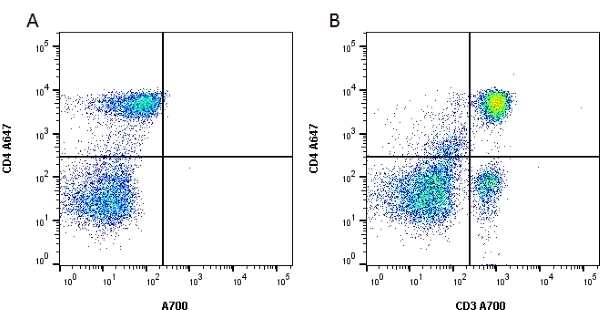 Anti Rat CD3 Antibody, clone 1F4 thumbnail image 2
