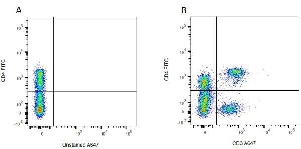 Anti Rat CD3 Antibody, clone 1F4 thumbnail image 4
