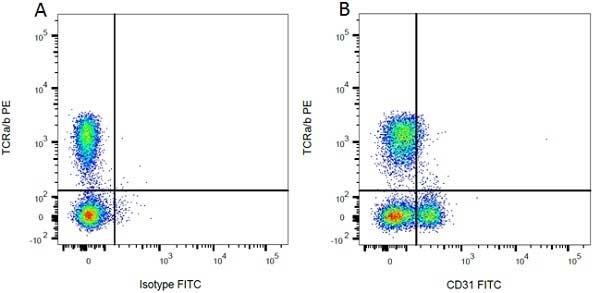 Anti Rat CD31 Antibody, clone TLD-3A12 thumbnail image 1