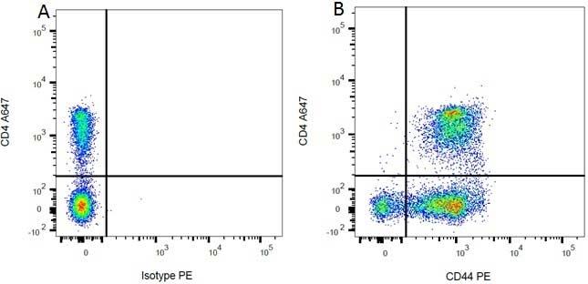Anti Rat CD44 Antibody, clone OX-50 thumbnail image 1