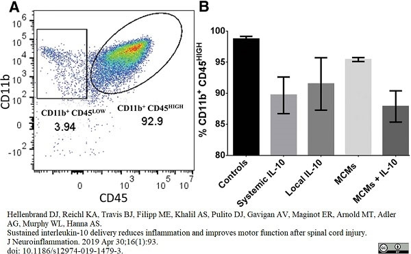Anti Rat CD45 Antibody, clone OX-1 thumbnail image 6