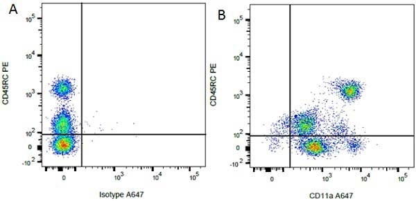 Anti Rat CD45RC Antibody, clone OX-22 thumbnail image 3