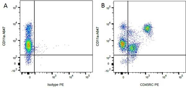 Anti Rat CD45RC Antibody, clone OX-22 thumbnail image 4