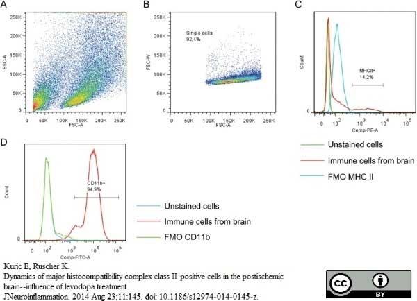Anti MHC Class II H-2I-Ak/s Antibody, clone OX-6 thumbnail image 13