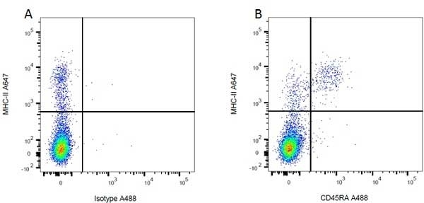 Anti MHC Class II H-2I-Ak/s Antibody, clone OX-6 thumbnail image 3