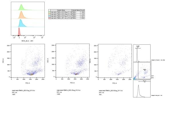 Anti Sheep CD230 (aa144-154) Antibody, clone ROS-BC6 thumbnail image 3