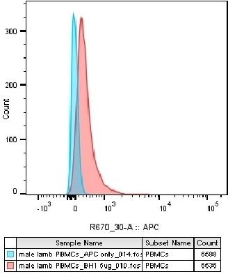Anti Sheep CD230 (aa143-154) Antibody, clone ROS-BH1 thumbnail image 3