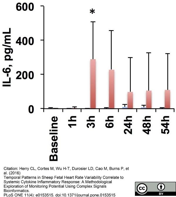 Anti Sheep Interleukin-6 Antibody, clone 4B6 thumbnail image 1