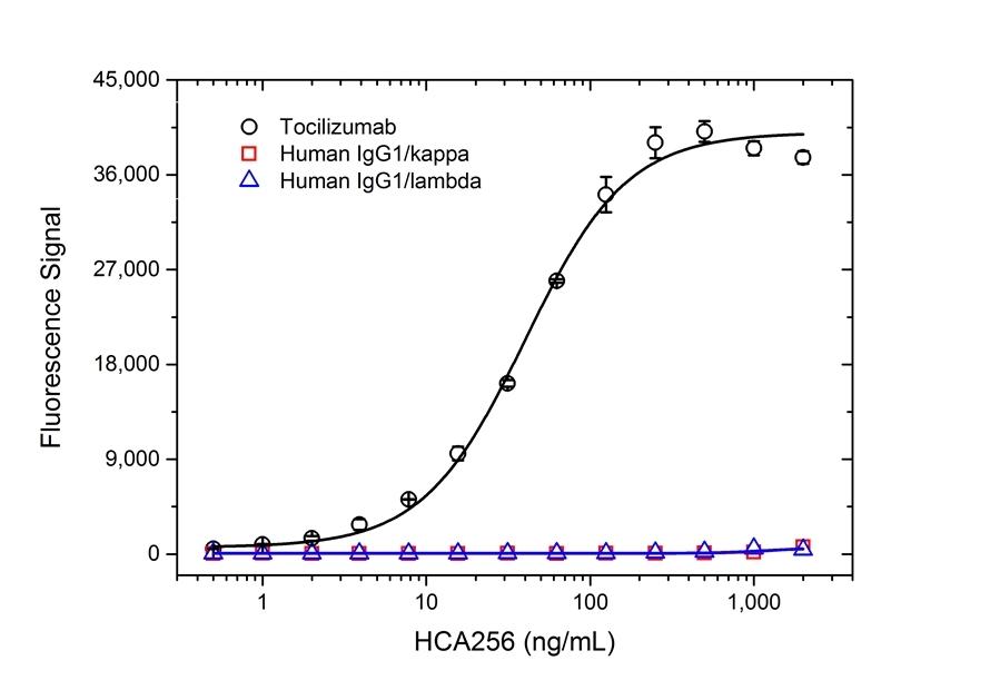 Anti Tocilizumab Antibody, clone AbD21345_hIgG1 thumbnail image 2