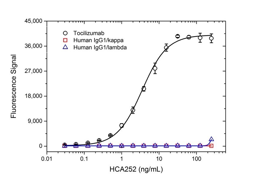 Anti Tocilizumab Antibody, clone AbD21362 thumbnail image 2