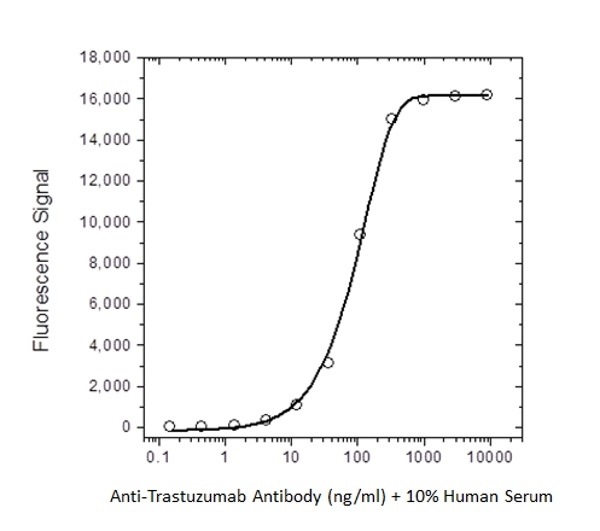 Anti Trastuzumab Antibody, clone AbD18018_hIgG1 thumbnail image 1