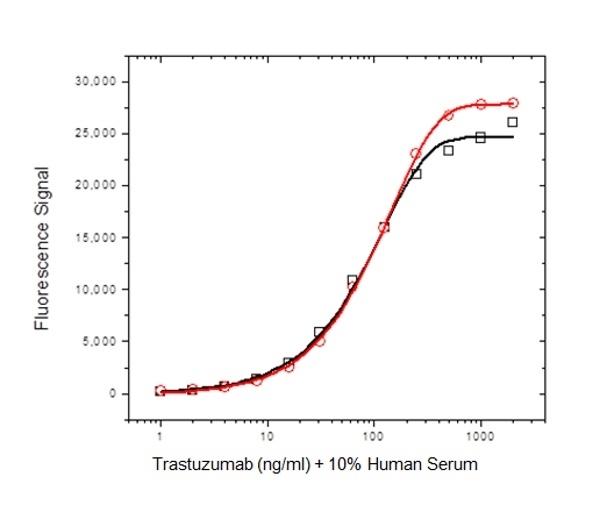 Anti Trastuzumab Antibody, clone AbD18141 thumbnail image 3