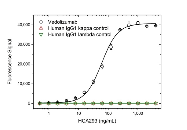 Anti Vedolizumab Antibody, clone AbD30136_hIgG1 thumbnail image 2
