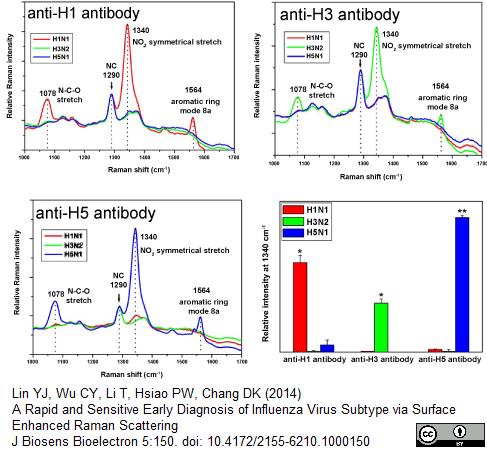 Anti Influenza A H1N1 Hemagglutinin Antibody, clone C102 (IV.C102) thumbnail image 1