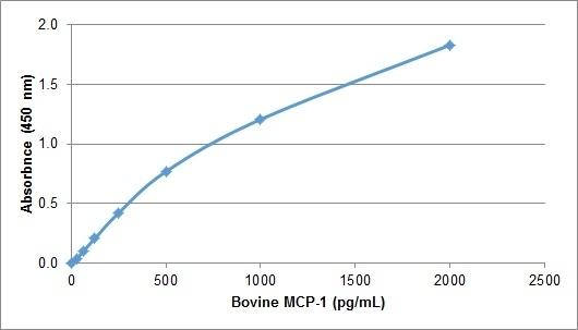 Anti Bovine MCP-1 Antibody gallery image 1