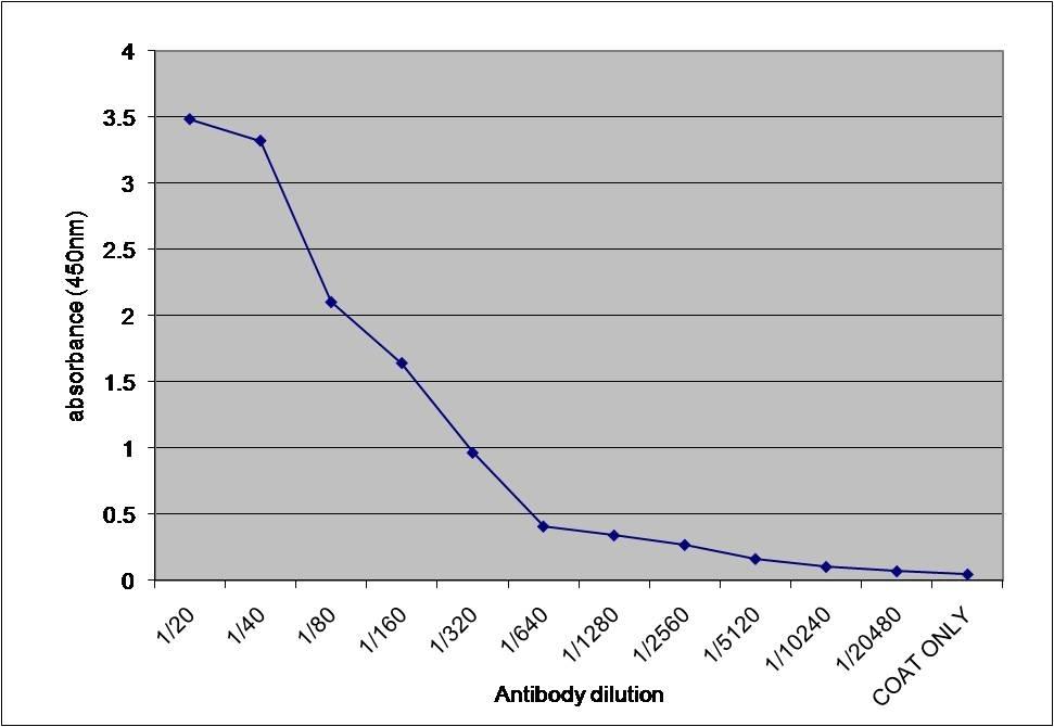 Anti Human Alpha 1 Microglobulin Antibody gallery image 1