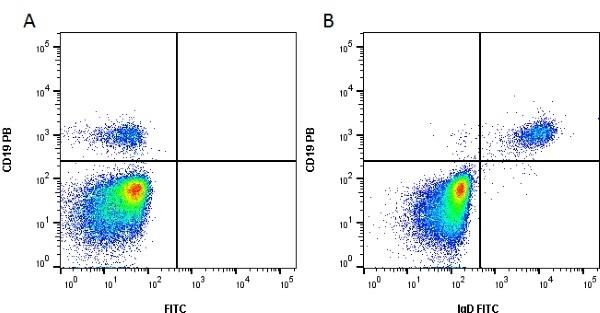 Anti Human IgD Antibody gallery image 1