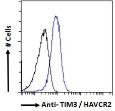 Anti Human TIM-3 Antibody thumbnail image 3