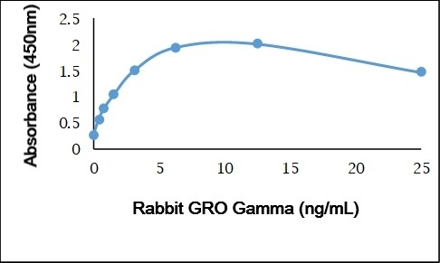 Anti Rabbit GRO Gamma Antibody gallery image 1