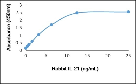 Anti Rabbit Interleukin-21 Antibody gallery image 1