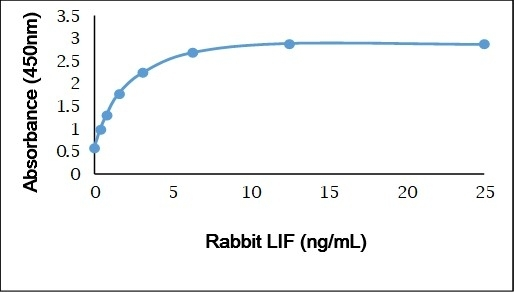 Anti Rabbit Leukemia Inhibitory Factor Antibody gallery image 1