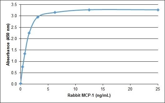 Anti Rabbit MCP-1 Antibody gallery image 1