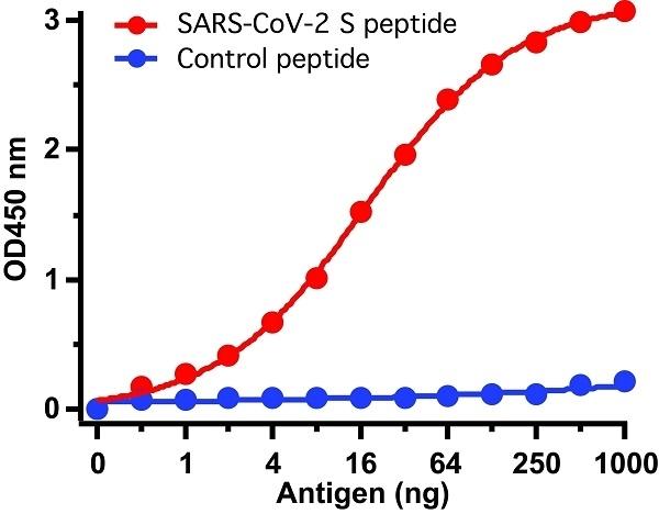 Anti SARS-CoV-2 Spike Protein Antibody thumbnail image 3