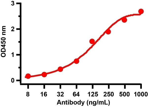 Anti SARS-CoV-2 Spike Protein Rbd Antibody thumbnail image 5