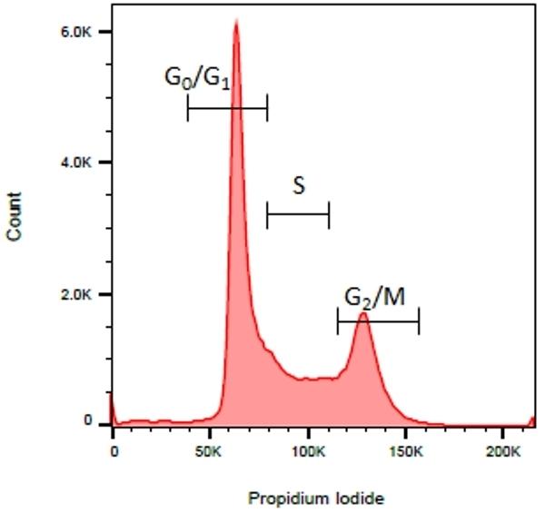READIDROP™ Propidium Iodide thumbnail image 2